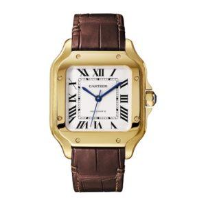 Cartier Santos De Cartier WGSA0010