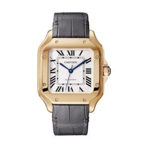 Cartier Santos De Cartier WGSA0008