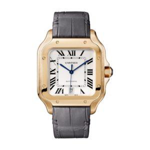 Cartier Santos De Cartier WGSA0011